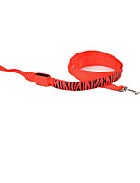 Leash Safety Zebra Terylene