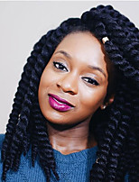 Twist Braids Hair Braid Havana Crochet Ombre Braiding Hair Crochet Braids with Human Hair 100% Kanekalon Hair Black Blue Burgundy Purple
