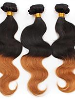 vierge Cheveux Brésiliens A Ombre Ondulation naturelle Extensions de cheveux 3 Noir / Medium Auburn