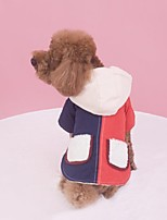 Dog Coat Dog Clothes Casual/Daily Color Block Blue Orange