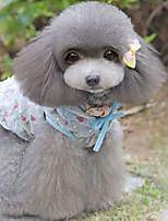 Dog Dress Dog Clothes Casual/Daily Floral/Botanical Rainbow