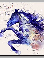Gallop Modern Artwork Wall Art for Room Decoration