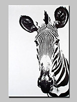 Hand-Painted Animal Vertical,Abstract Modern 1pc Canvas Oil Painting For Home Decoration