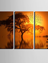 3 Canvas Vertical Print Wall Decor For Home Decoration