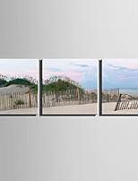 3 панели Холст С картинкой Декор стены For Украшение дома