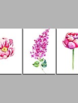 flower family 3-piece modern art wall art per la decorazione della stanza 20x28inchx3