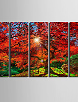 Five Panels Canvas Vertical Print Wall Decor For Home Decoration