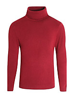Men's Casual/Daily Simple Regular Pullover,Solid Turtleneck Long Sleeves Polyester Winter Medium Micro-elastic