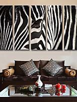 Stampa trasferimenti su tela Astratto,5 Tela Stampa Decorazioni da parete For Decorazioni per la casa