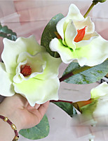 1 Branch Polyester Orchids Tabletop Flower Artificial Flowers