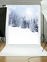 photo toiles de fond 5x7ft vinyle beau fond de photographie de dessin de Noël