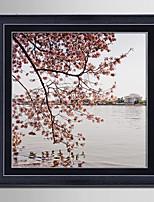 Arquitectura Floral/Botânico Paisagem Quadros Emoldurados Conjunto Emoldurado Arte de Parede,PVC Material com frame For Decoração para