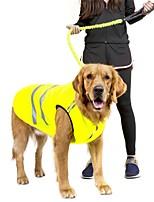 Chien Sweatshirt Gilet Vêtements pour Chien Décontracté / Quotidien Garder au chaud Nouvel An Solide Orange Vert Costume Pour les animaux