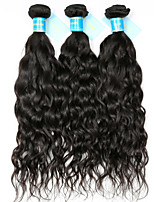 Unprocessed Indian Natural Color Hair Weaves Water Wave Hair Extensions 3 Pieces Black