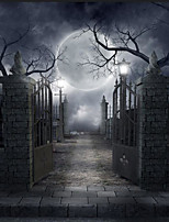 5*7ft Big Photography Background Backdrop Classic Fashion Halloween Gothic Architecture Theme For Studio Professional Photographer
