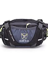 3 L Waist Bag/Waistpack Camping / Hiking Hiking Running Fast Dry Cloth Nylon
