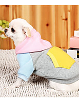 Dog Hoodie Dog Clothes Casual/Daily Color Block Gray Blushing Pink