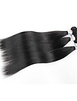 Virgin Brazilian Bundle Hair Straight Hair Extensions 3 Pieces Black
