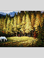 Hand-Painted Animal Horizontal Panoramic,Others One Panel Canvas Oil Painting For Home Decoration