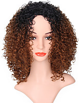 Women Synthetic Wig Capless Long Jerry Curl Black/Medium Auburn Ombre Hair Natural Wigs Costume Wig