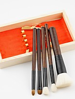 5PCS Makeup Brush Set Blush Brush Eyeshadow Brush Concealer Brush Powder Brush Horse Goat Hair Full Coverage Synthetic Resin Lip