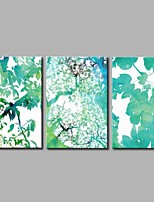 Forest 3-Piece Modern Artwork Wall Art for Room Decoration 20x28inchx3