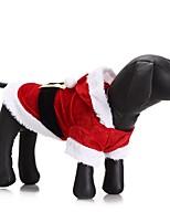 Katze Hund Kostüme Mäntel Kapuzenshirts Hundekleidung Party Cosplay Lässig/Alltäglich warm halten Hochzeit Halloween Weihnachten Neujahr