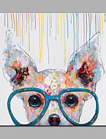 Hand-Painted Animal Square,Modern Style 1 pc Canvas Oil Painting For Home Decoration