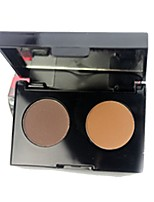 2 Pressed Powder Matte Pressed powder Casual/Daily Face Daily