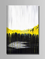Hand-Painted Abstract Vertical,Abstract 1pc Canvas Oil Painting For Home Decoration
