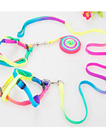 Dog Harness Leash Trainer Portable Foldable Adjustable Flexible Rainbow Nylon