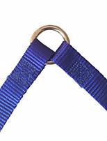 Chien Laisses Marche Couleur Pleine Nylon Bleu