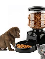 Кошка Собака Кормушки Животные Чаши и откорма Автоматический Белый Черный