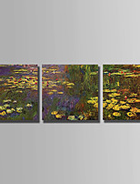 Hand-Painted Floral/Botanical Horizontal,Abstract Three Panels Canvas Oil Painting For Home Decoration