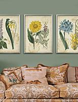 Floral/Botânico Vintage Ilustração Arte de Parede,PVC Material com frame For Decoração para casa Arte Emoldurada Sala de Estar Cozinha