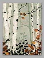 Pintados à mão Floral/Botânico Vertical,Modern 1 Painel Tela Pintura a Óleo For Decoração para casa