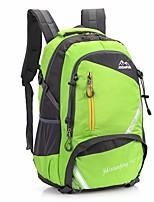 Women Bags Nylon School Bag Zipper for Sports All Season Blue Green Black Red Fuchsia