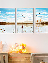 Landscape Wall Stickers Plane Wall Stickers Decorative Wall Stickers,Vinyl Material Home Decoration Wall Decal