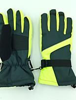 Недорогие -Лыжные перчатки Универсальные Полный палец Водонепроницаемость Подкладочная ткань Катание на лыжах Зима