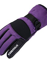 Недорогие -Лыжные перчатки Универсальные Полный палец Сохраняет тепло Покрытие Катание на лыжах Пешеходный туризм На открытом воздухе Велосипедный