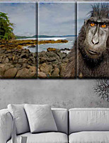 Stretched Canvas Print Classic,One-piece Suit Canvas Vertical Panoramic Print Wall Decor For Home Decoration