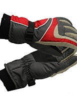 cheap -Ski Gloves Unisex Full-finger Gloves Keep Warm Coating Ski / Snowboard Hiking Outdoor Exercise Winter