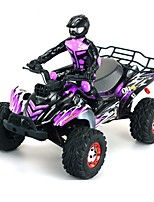 economico -Auto RC JJRC FY-04 2.4G Off Road Car 1:12 40 KM / H