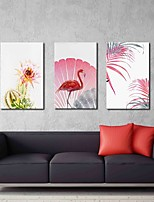 Phoenicopteridae 3-Piece Modern Artwork Wall Art for Room Decoration 20x28inchx3