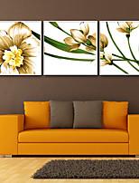 economico -Botanica Floreale/Botanical Illustrazioni Decorazioni da parete,PVC Materiale con cornice For Decorazioni per la casa Cornice Salotto