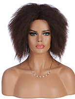 cheap -Women Synthetic Wig Short Kinky Curly Afro Curly Brown African American Wig Party Wig Celebrity Wig Halloween Wig Cosplay Wig Natural Wigs