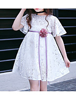 Girl's Casual/Daily Solid Dress,Polyester Winter Fall Long Sleeves Simple White Blushing Pink Lavender
