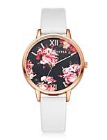 preiswerte -Damen Armbanduhr Chinesisch Quartz Armbanduhren für den Alltag PU Band Retro Freizeit Elegant Schwarz Weiß Blau Rot Braun Rosa Beige Rose
