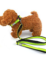 cheap -Cat Dog Leash Reflective Portable Foldable Solid Other Material Green Black