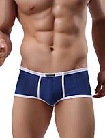 abordables -Hombre Rígido Sólido Medio Boxer,Algodón 1pc Azul Piscina Blanco Negro Rojo